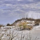 View From The Dunes by Kathy Baccari