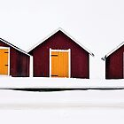 The three colour sheds by Samuel Glassar