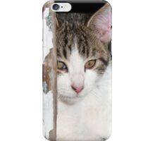 Little Kitty iPhone Case/Skin