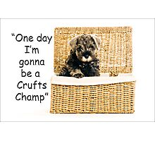 Riley becomes a champion at crufts 2012 Photographic Print