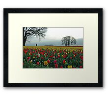 In A Sea Of Color Framed Print