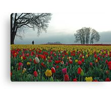 In A Sea Of Color Canvas Print