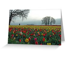 In A Sea Of Color Greeting Card