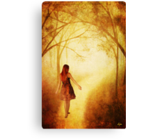 Amanda's Path_Altered 2 Canvas Print