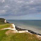Beachy Head by Lisa Williams
