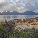 Morning Hazards - Freycinet Peninsula, Tasmania by TonyCrehan