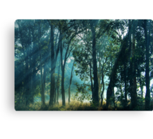 Sunbeams Canvas Print