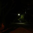Tree Shadows by Joan Wild