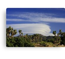 Clouds at Joshua Tree Canvas Print