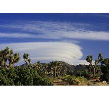 Clouds at Joshua Tree Photographic Print