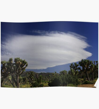 Clouds at Joshua Tree 2 Poster