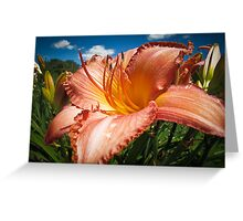 Basking in the Sunlight ~ Peach Colored Lily in a Flower Garden on a Hot Summer Day Greeting Card