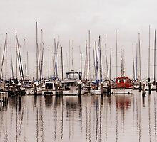 Sleeping Masts and Sleeping Dreams. by Larry Lingard-Davis