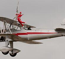 On Silver Wings by gfydad