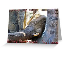 Nature-Elephant -NP challenge Greeting Card