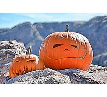 Pioneer Pumpkins  Photographic Print