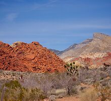 Red Rock Canyon by Heather Eeles