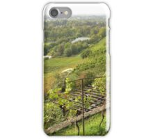 Weinbergkirche Pillnitz iPhone Case/Skin