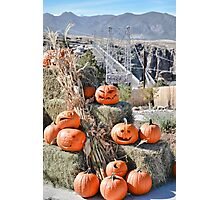 Royal Gorge Bridge and Friends  Photographic Print