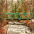 Green Bridge by Dale Lockwood