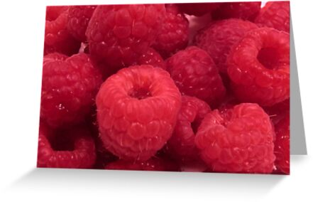 Delicious Red Raspberries by hummingbirds