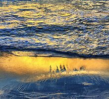 Shimmering Magically into the Evening Sun by Jill Fisher