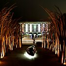 sculpture, library and lights by natalie angus