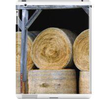 The Hay Barn    ^ iPad Case/Skin