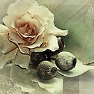 """""""Julia with Gum Nuts............"""" by Rosehaven"""