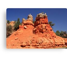 Canyon Sculptures Canvas Print