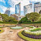 Sydney City from Botanic Garden by Rod Kashubin