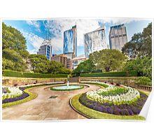 Sydney City from Botanic Garden Poster