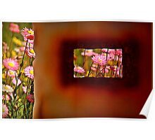 Rust and Wild Flowers Poster
