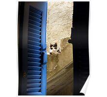 Athenian Cat Poster