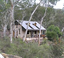 Give Me a Home Among the Gumtrees by Alison Murphy