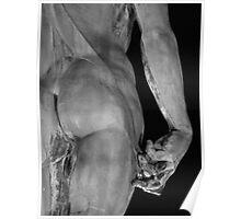 Michelangelo's David Poster