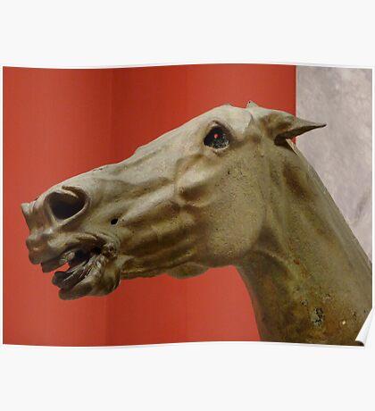 Ancient Greek Horse Head Poster
