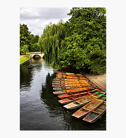 Punting On The Cam, Cambridge. Photographic Print