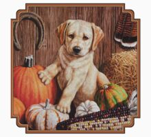 Pumpkin Harvest Puppy Baby Tee
