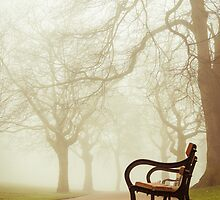 Fog in Weston Park by Jose Vazquez