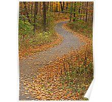 Fall Follow-Up Poster