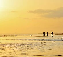 Low Tide Sunset - Hove #10 by Matthew Floyd