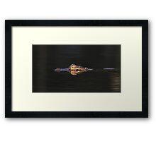 Gator Done Framed Print