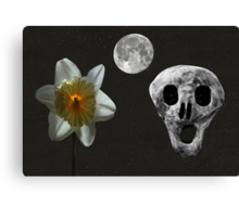 Death And The Daffodil  Canvas Print