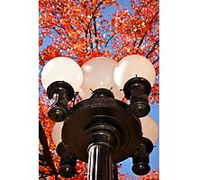 street lamp in Prescott Arizona Photographic Print