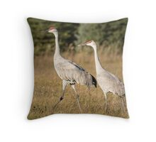 Sandhill Family 2015-1 Throw Pillow