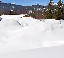 "Germany, Alps, ""Buried"" in the Snow :) by Daidalos"