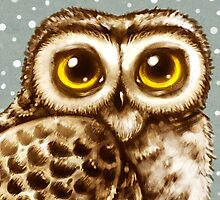 Owl Face by Heather Hitchman