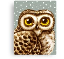 Owl Face Canvas Print