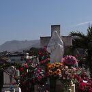 Dead And Living People - Gente Muertos Y Vivos by Bernhard Matejka